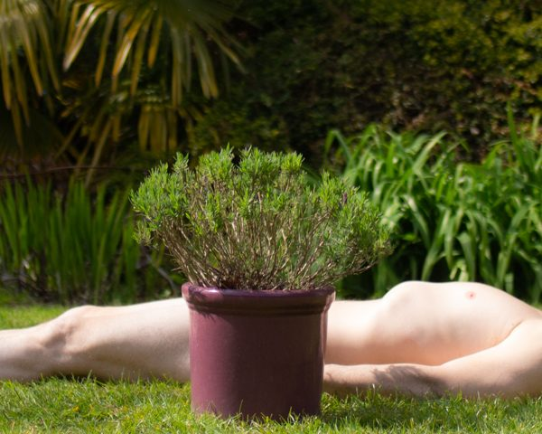 Bare as you dare - how sunbathing prevents back pain
